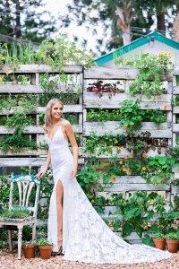 Herb Garden Backdrop